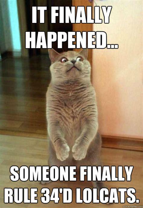 finally happened  cat meme cat planet cat