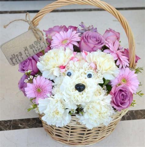 puppy flower arrangement puppy flower arrangement puppy animal flowers