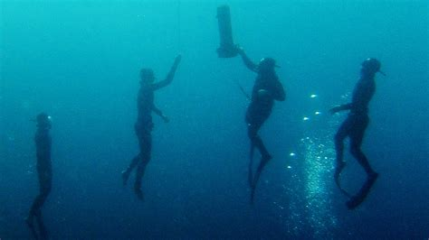some competitors say free diving needs a safety sea change