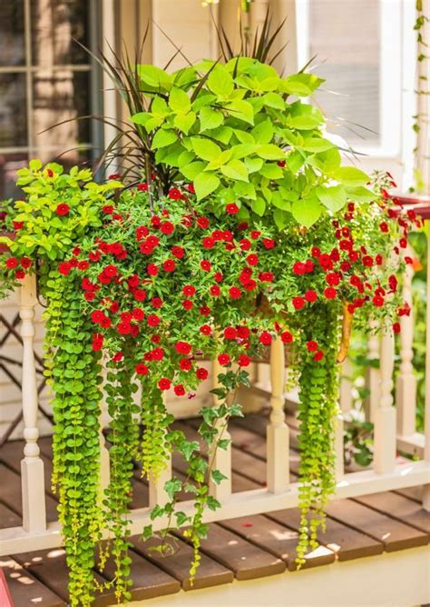Deck Railing Flower Planters by The 25 Best Ideas About Deck Railing Planters On