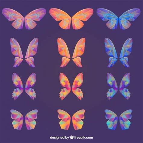 Premium Abstrac abstract butterfly collection vector premium