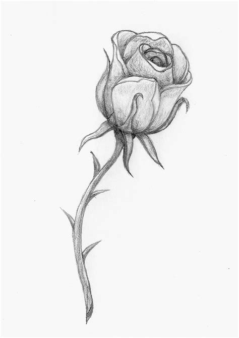 A Rose By Any Other Name by balloon-fiasco on DeviantArt