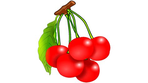 clipart on line 21 prodigious cherry clipart free fruit names a z with