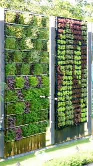 Vertical Garden Mesh Best 25 Wall Gardens Ideas On