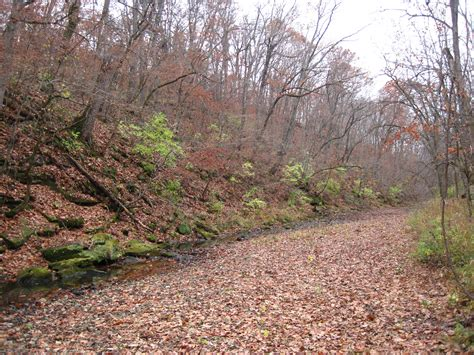 Landscape Rock Missouri Columbia Missouri Ecological Disaster In An Oblivious