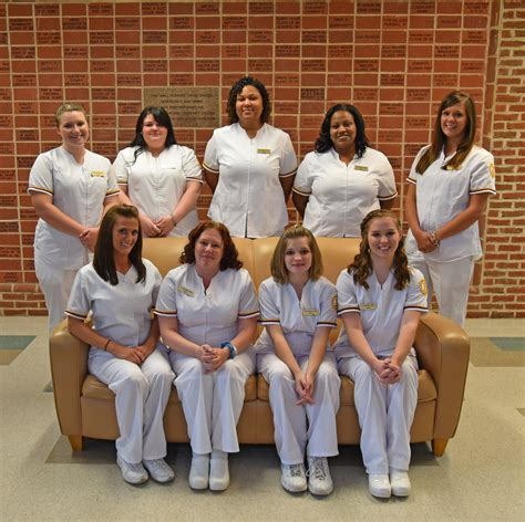 College Of Mount Vincent Nursing Reviews by College Of Mount Vincent Nursing Reviews Sales Executive Resume