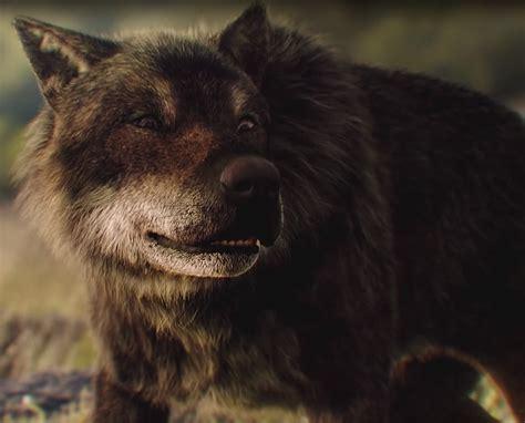 Wolf Blood by Wolfblood Antcgi Ltd