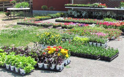 Garden Plants For Sale by Tipton Rosemark Academy Alumni Association Tipton