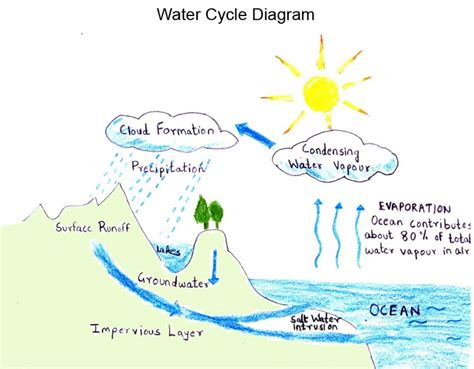 simple water diagram water cycle diagram projects