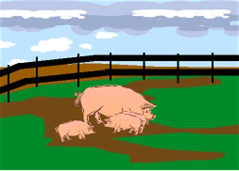 cochera de marranos vida de cerdos
