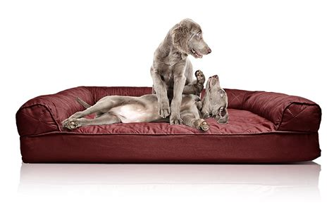 couch dog bed orthopedic sofa dog bed brokeasshome com