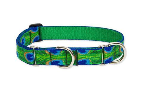 how to use collar how to properly use a martingale collar ebay