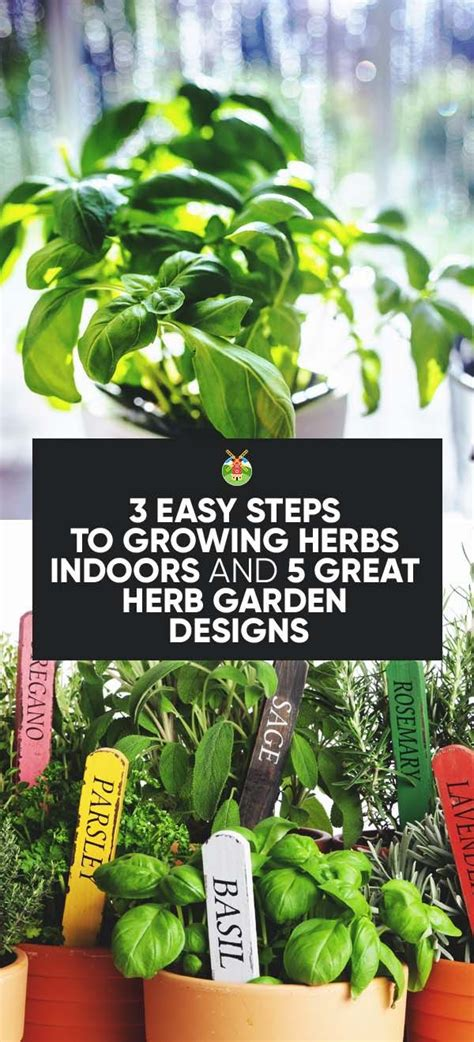 easy herbs to grow inside 17 best ideas about herb garden indoor on pinterest