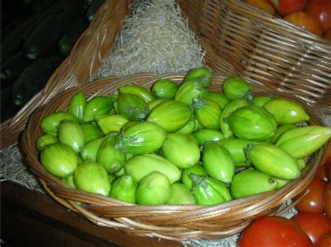 what type of fruit is garden egg fruits vegetables in nigeria that aids digestion health