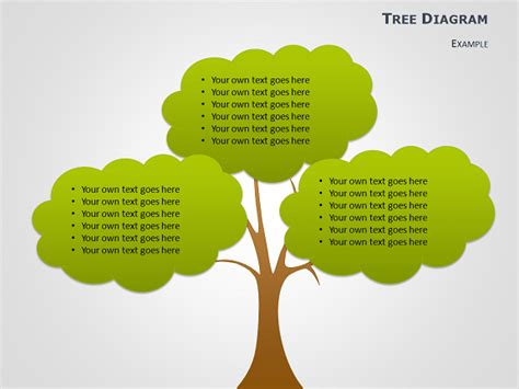 Free Editable Family Tree Template Word Template Business Powerpoint Tree Diagram