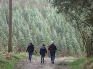 Dalby Forest Eco Friendly Visitor Centre Opens by Dalby Forest Go Explore