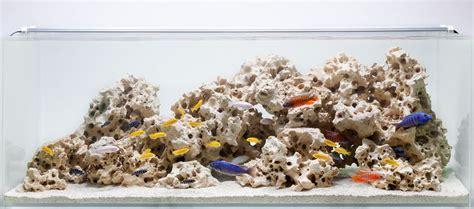 aquarium design group hardscape aquarium design group a classic african cichlid