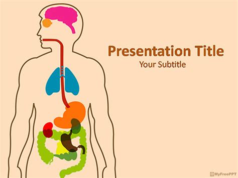 free human anatomy powerpoint template download free