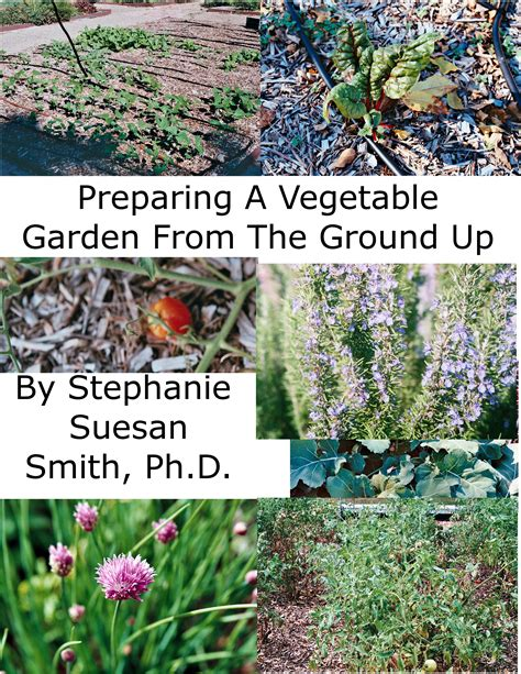 preparing a vegetable garden from the ground up