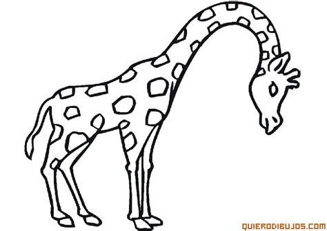 imagenes jirafas colorear jirafa para colorear