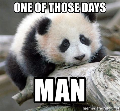 Sad Panda Meme Generator - one of those days man sad panda meme generator