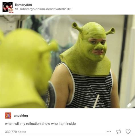 funniest shrek jokes   history  humanity