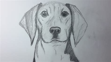 dibujos realistas a lapiz faciles dibujos a lapiz faciles de perros www pixshark com