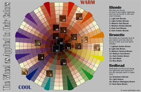 color wheel hair dye how to use the hair color wheel
