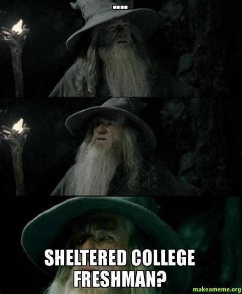 Sheltered College Freshman Meme - sheltered college freshman i m confused make a meme