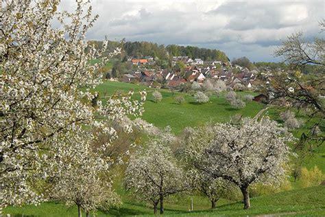 feuerstellen schwarzwald sonnendorf arboldswil juraparadies der region