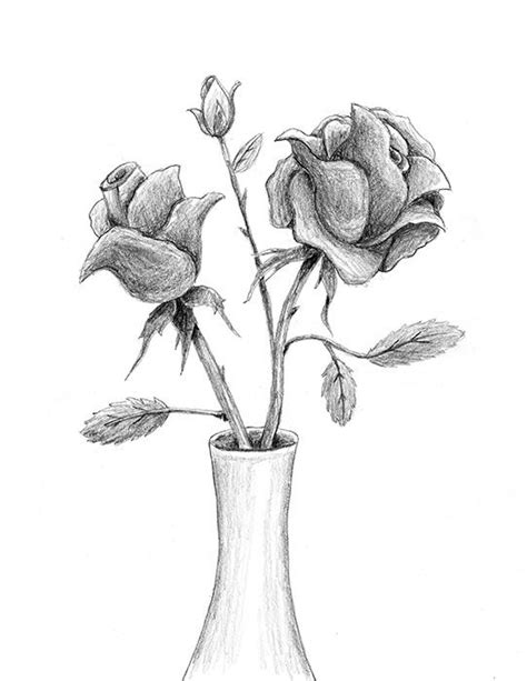 photos easy pencil drawing of rose in vase drawing art
