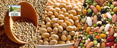 aminoacidi negli alimenti naturali i 3 alimenti vegetali ricchi di proteine la collina dei