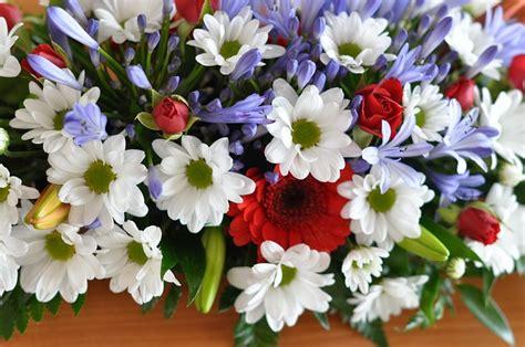immagini mazzi di fiori gratis mazzo di fiori fiore 183 foto gratis su pixabay