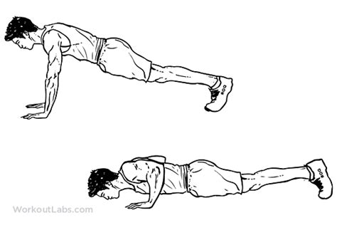 push  illustrated exercise guide workoutlabs