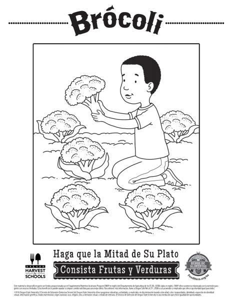 spanish food coloring page 142 best coloring sheets images on pinterest coloring