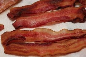 can dogs eat bacon can dogs eat bacon can dogs eat this