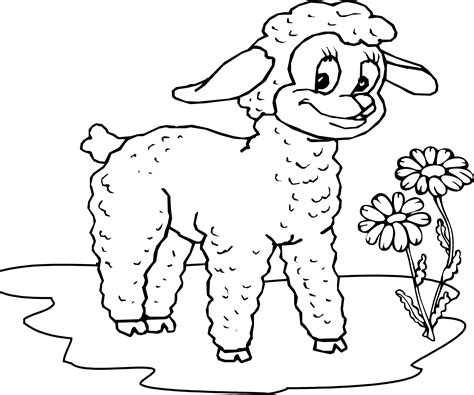 small sheep coloring page little sheep smile coloring pages education pinterest