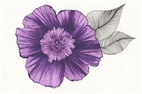 printable purple flowers 301 moved permanently