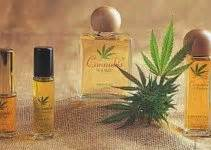 Can Essential Oils Help Detox Thc by 11 Health Benefits Of Glycolic Acid
