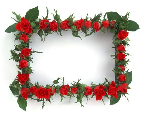 flower frame template 46 frames for photoshop