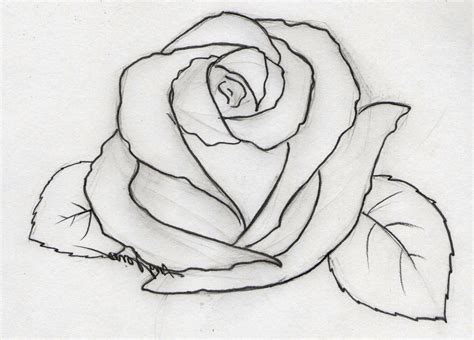 easy drawings easy drawings for beginner artists great drawing