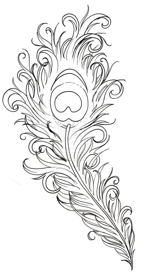 coloring pages of peacock feathers peacock feather drawing peacock feather tattoo by