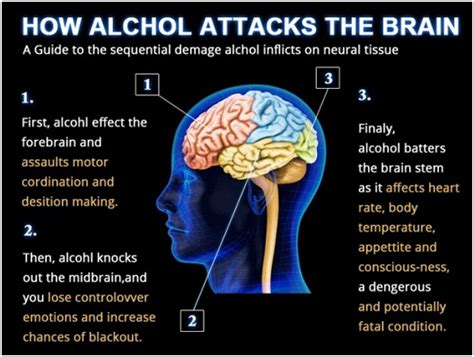 Can Detox Cause Brain Damage by New Year Without Alcoholism About Islam