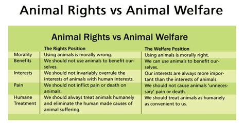 Essay On World Animal Welfare Day by Sustainable Development Animal Welfare