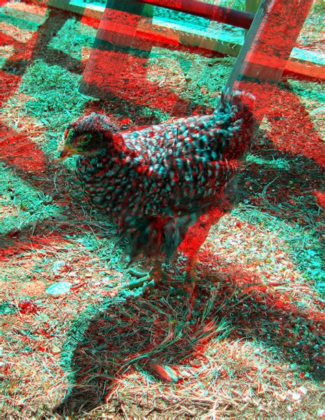 create 3d photos make your 3d glasses and see these awesome 3d images