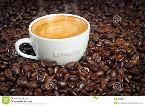 Coffee Di Coffee Bean cup of espresso in roasted coffee beans royalty free