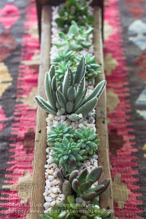 Succulent Planter Ideas by 1000 Ideas About Succulent Planters On