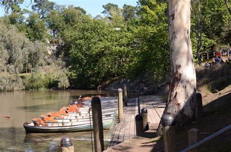 boat oars melbourne fairfield park boathouse and tea gardens melbourne by