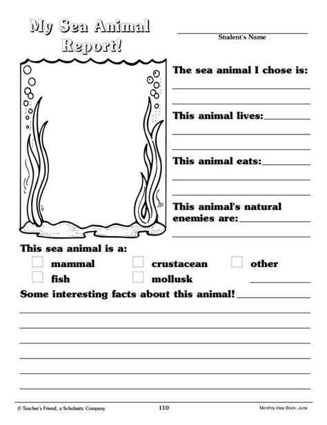animal adaptations worksheets 4th grade worksheets for all