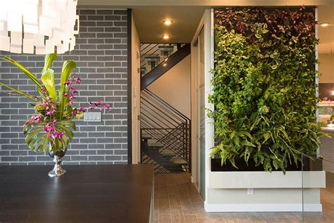 Living Wall Vertical Garden Benefits Quiet Corner Interior Wall Garden
